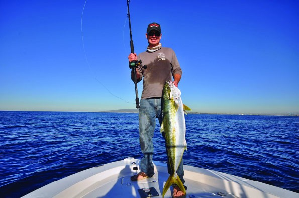yellowtail 9